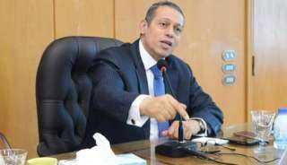 الدكتور أيمن سلامة : ضمانات نجاح مراقبة وقف إطلاق النار في ليبيا